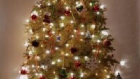 MERRY CHRISTMAS 2020!!!